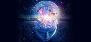 neuroplasticity-1
